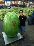 this-dude-won-the-melon-contest.jpg