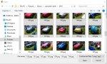 add_photos_4.jpg